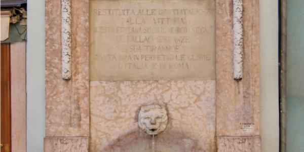 Fontana Marmo Marrone Mogano